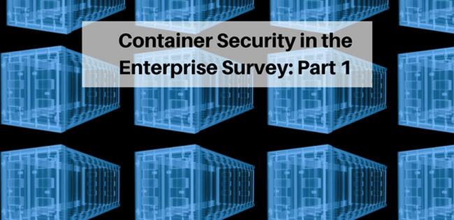 Container Security in The Enterprise Survey