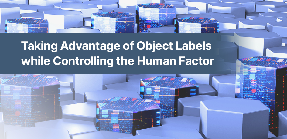 Taking Advantage of Object Labels while Controlling the Human Factor